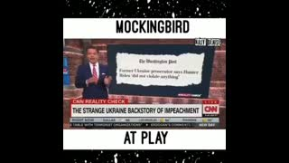 There Is No Evidence Biden Did Anything Wrong (Mockingbird Media)